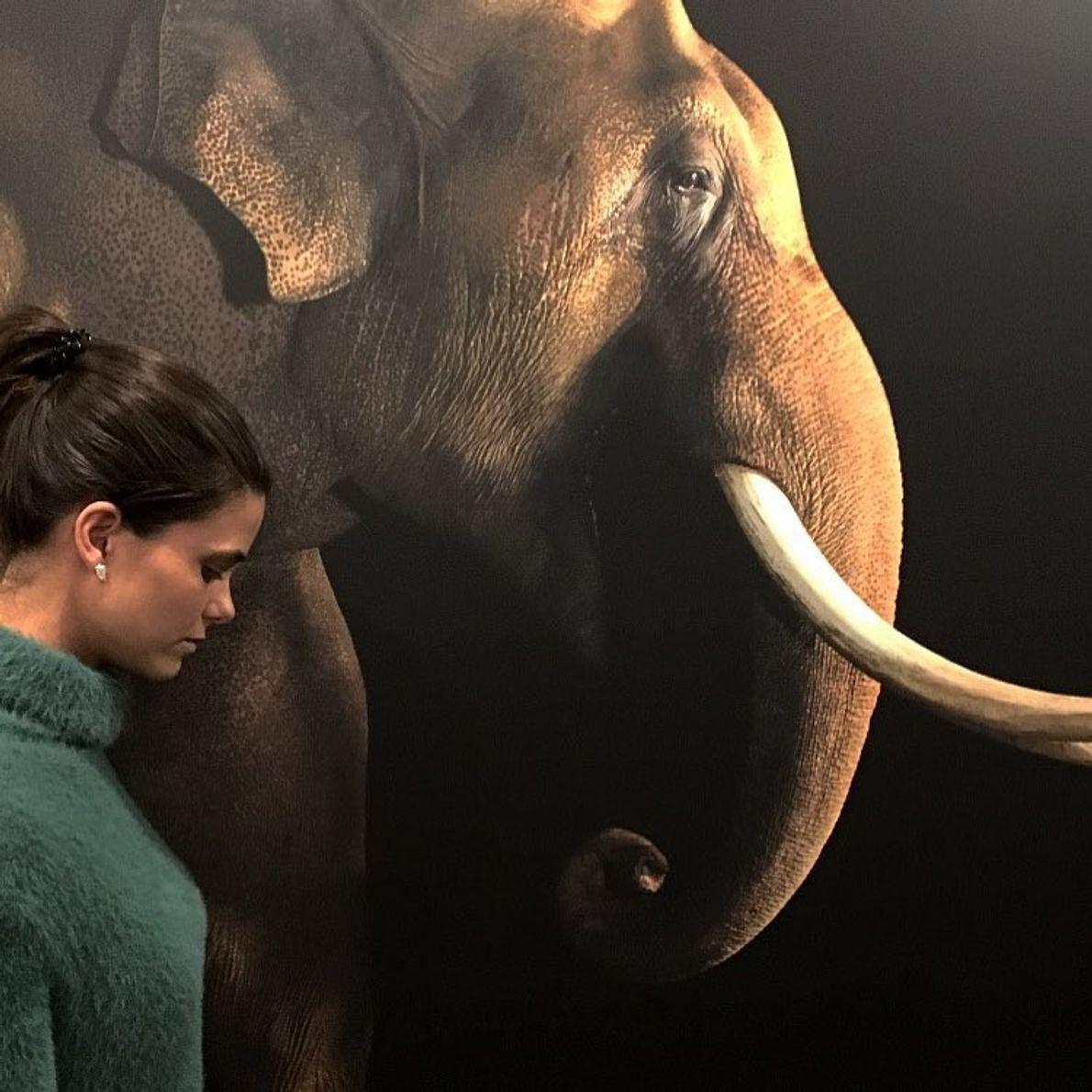 Imagem da seguidora @carolinacoelho28 na exposição Photo Ark