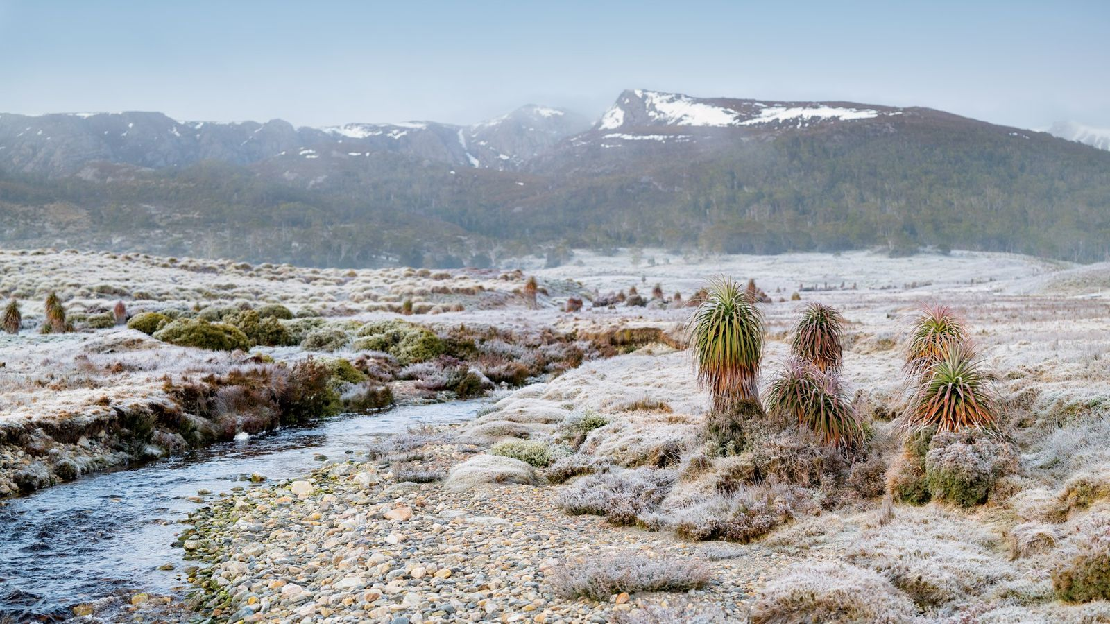 No Parque Nacional Cradle Mountain-Lake St. Clair, os caminhantes enfrentam trilhos de vários dias que atravessam ...