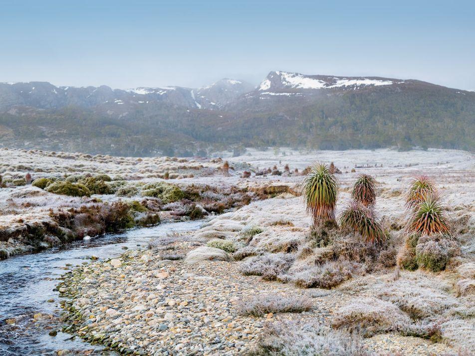 Tasmânia: Um Sonho Para os Amantes de Experiências ao Ar Livre