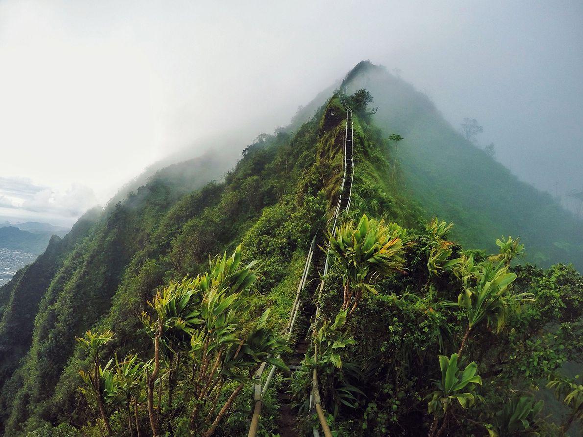 Oʻahu, Havai