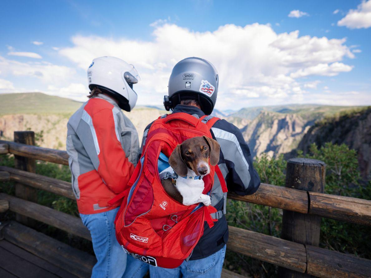 Os miradouros de Black Canyon atraem muitos viajantes. Os passeios panorâmicos levam os visitantes desde o ...