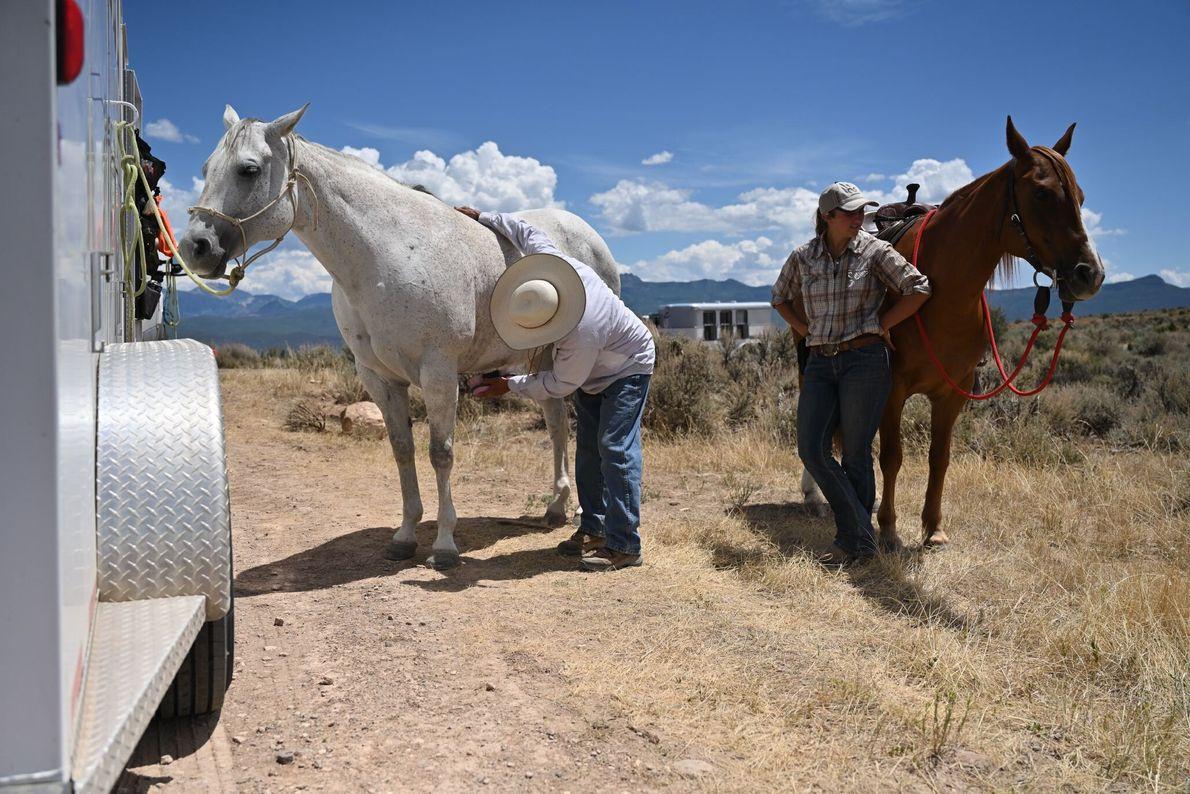 Há inúmeras oportunidades de recreação dentro e fora do parque. Os cavalos são permitidos num dos ...
