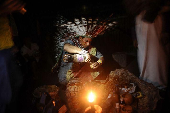 Um membro da tribo brasileira Huni Kui prepara ayahuasca para usar num ritual de cura. A ...
