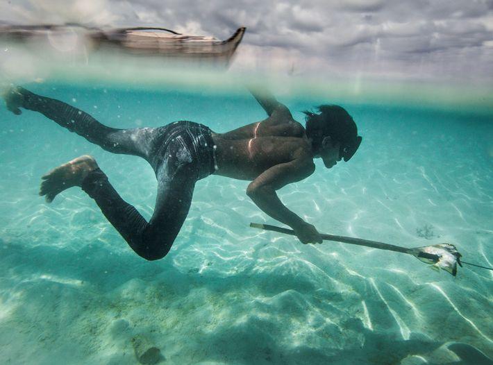 Um jovem bajau chamado Dido em busca de peixes que vivem junto aos corais e de ...