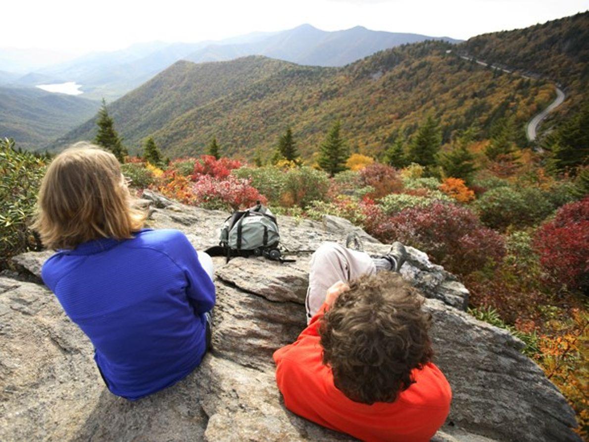 Virgínia - Carolina do Norte: Entrelaçado em azul