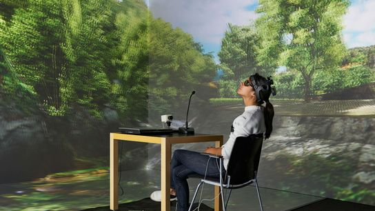 Uma experiência de realidade virtual testa os efeitos da natureza no cérebro