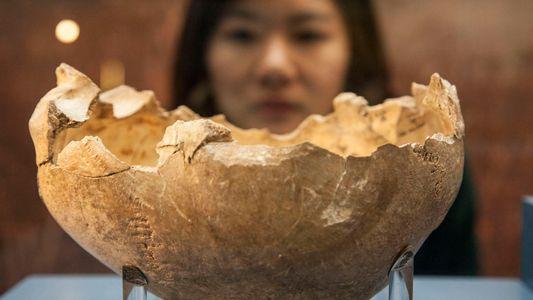 Estudo Sobre o Canibalismo Mostra Que Os Seres Humanos Não São Tão Nutritivos Como Se Achava