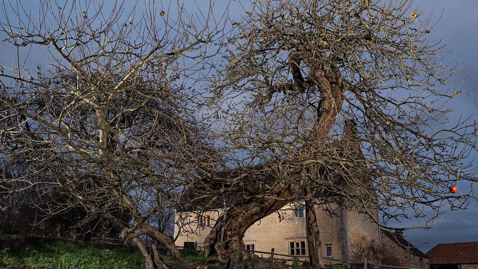 A casa de Isaac Newton