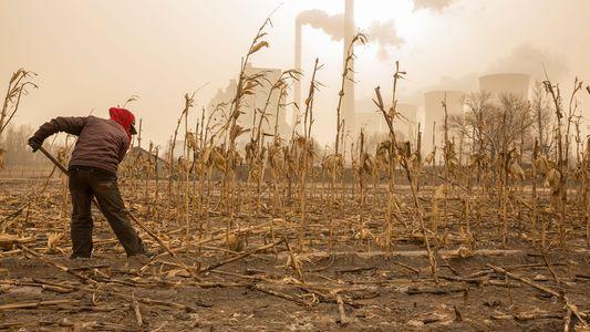 As Emissões de Carbono Tinham Estabilizado - Agora Estão Novamente a Aumentar