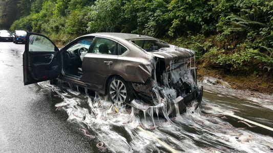 """""""Peixes-bruxa"""" Explodem em Autoestrada Após um Estranho Acidente"""