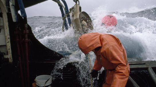 Um pescador verifica as linhas de pesca em alto mar.