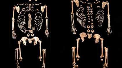 Encontrado ADN Surpreendente nos Antigos Povos da Península Ibérica
