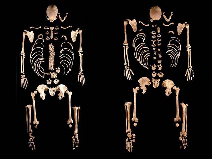 esqueletos de antigos caçadores-coletores
