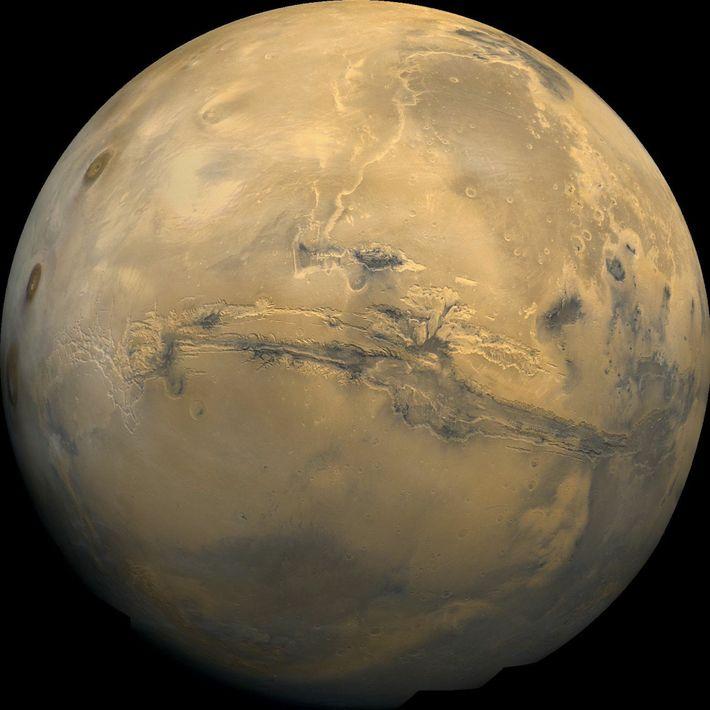 Visão de Marte