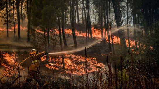 Um bombeiro tenta extinguir as chamas em Casais de São Bento, Mação, na região centro de ...