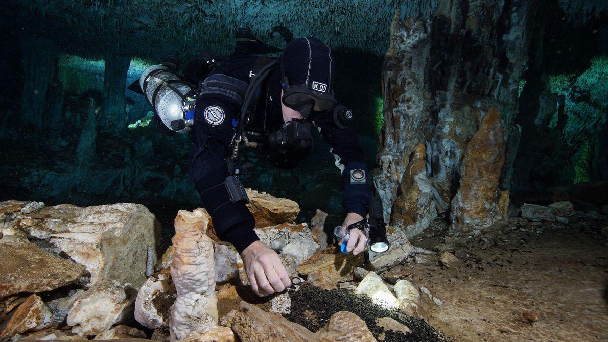 Um mergulhador recolhe carvão que era utilizado para iluminar a caverna de La Mina enquanto os ...