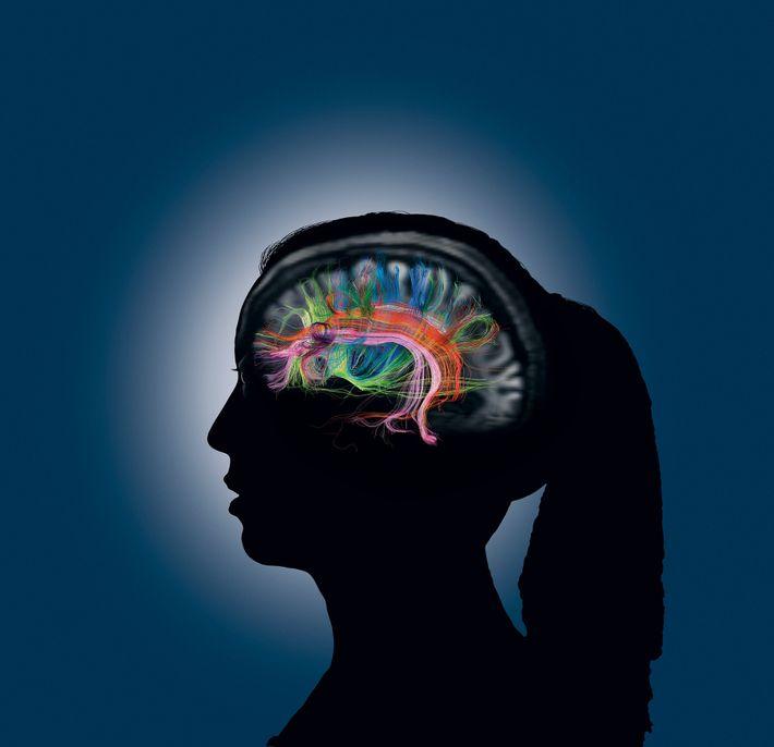 Quando acedemos a uma memória, diversas partes do nosso cérebro comunicam rapidamente umas com as outras, ...