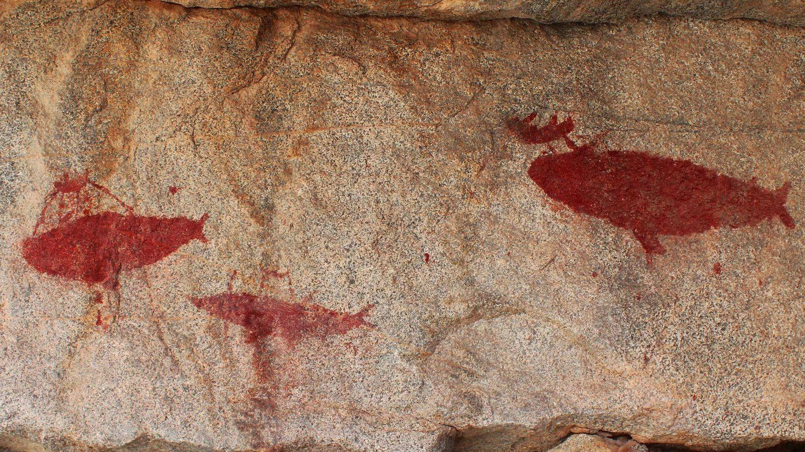 Pintura rupestre retrata uma caça à baleia