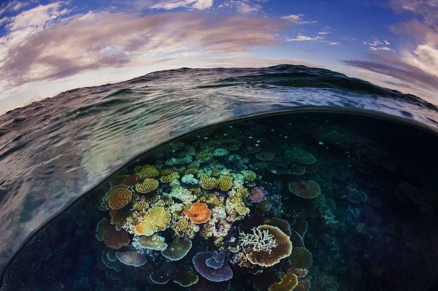 A Grande Barreira de Coral, muitas vezes apontada com a maior estrutura viva do mundo, estende-se ...