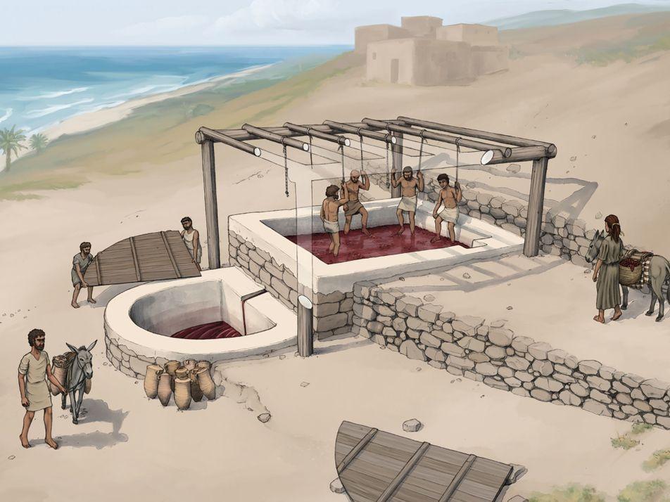 'Fábrica' de Vinho com 2600 Anos Descoberta no Líbano