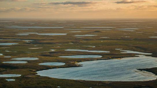 Lagos na tundra do Ártico espalhados pela Península de Yamal, no noroeste da Sibéria, na Rússia.