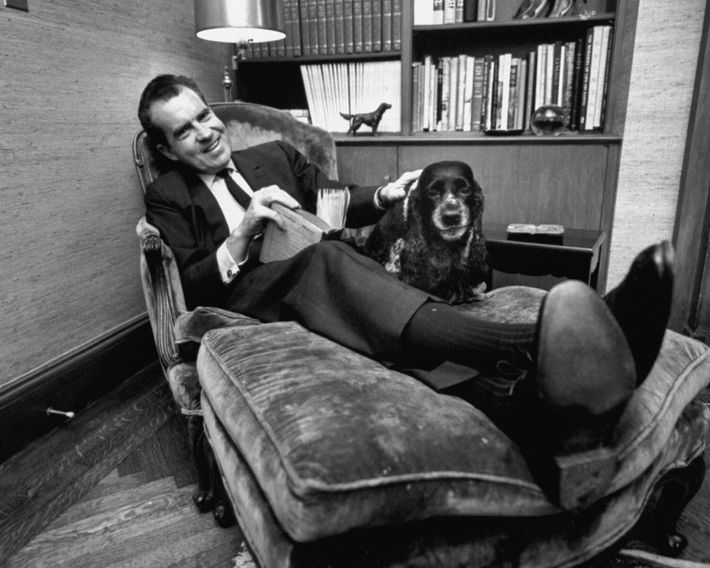 Richard Nixon faz festas a Checkers, uma cadela que lhe foi oferecida por um apoiante e ...