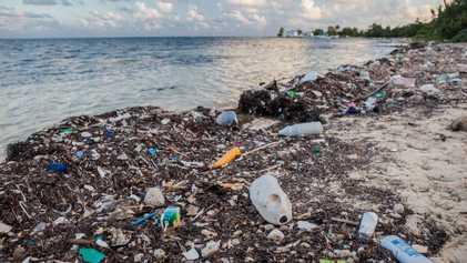 Straw Wars — A Guerra das Palhinhas: A Luta por Oceanos Livres de Resíduos Plásticos