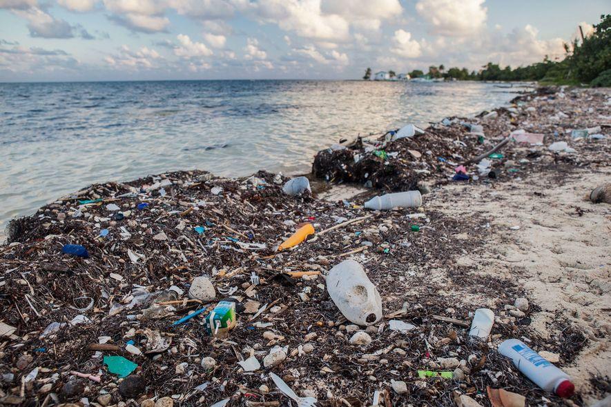 Todos os anos, é despejado para os oceanos o equivalente a cinco sacos de supermercado cheios ...