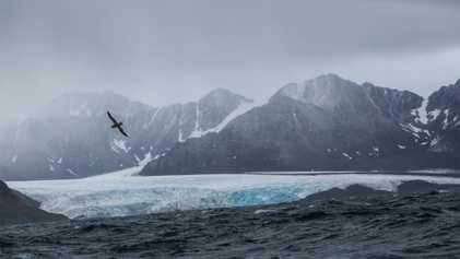 Expedição Enfrenta os Perigos do Ártico em Prol da Ciência Climática