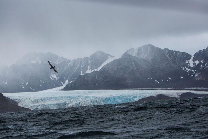 mar agitado svalbard