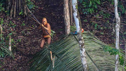 Exclusivo: Fotografias Incríveis e Inéditas de Tribo Isolada Revelam Factos Inesperados