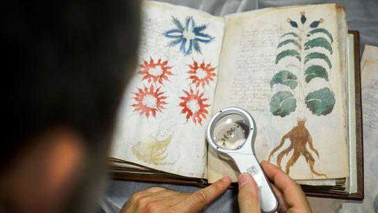 O Manuscrito de Voynich
