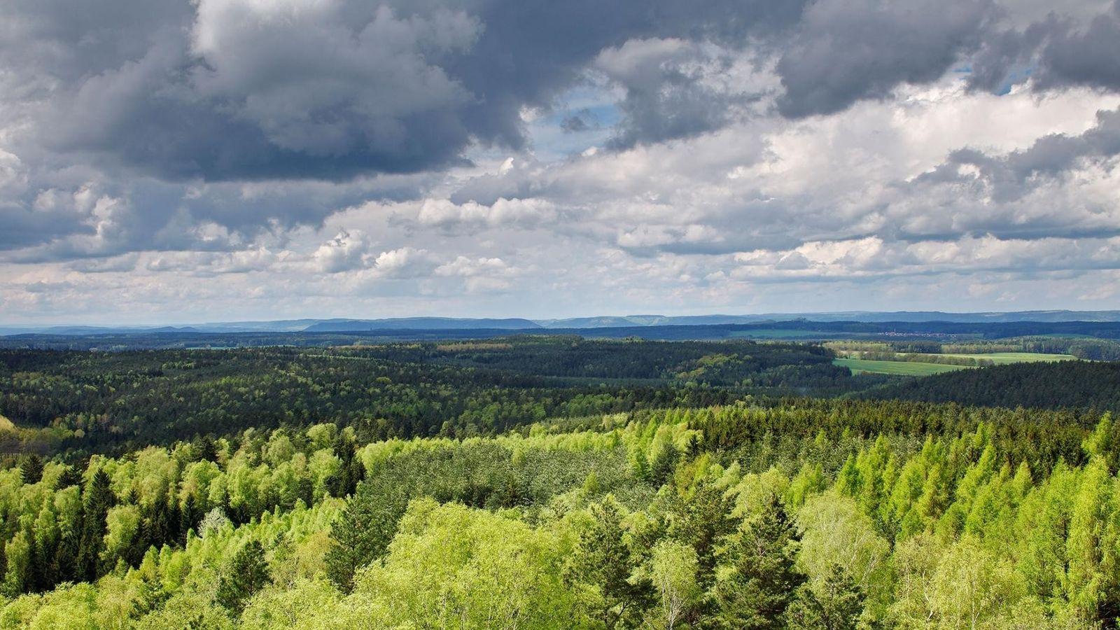 Uma floresta exuberante que se estende por todo o estado alemão da Turíngia. A Alemanha segue ...