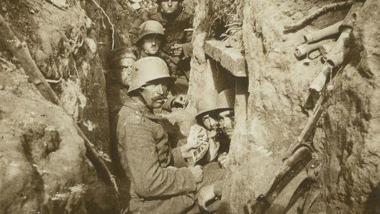 O Que Provocou a Primeira Guerra Mundial e Quais os Seus Efeitos?