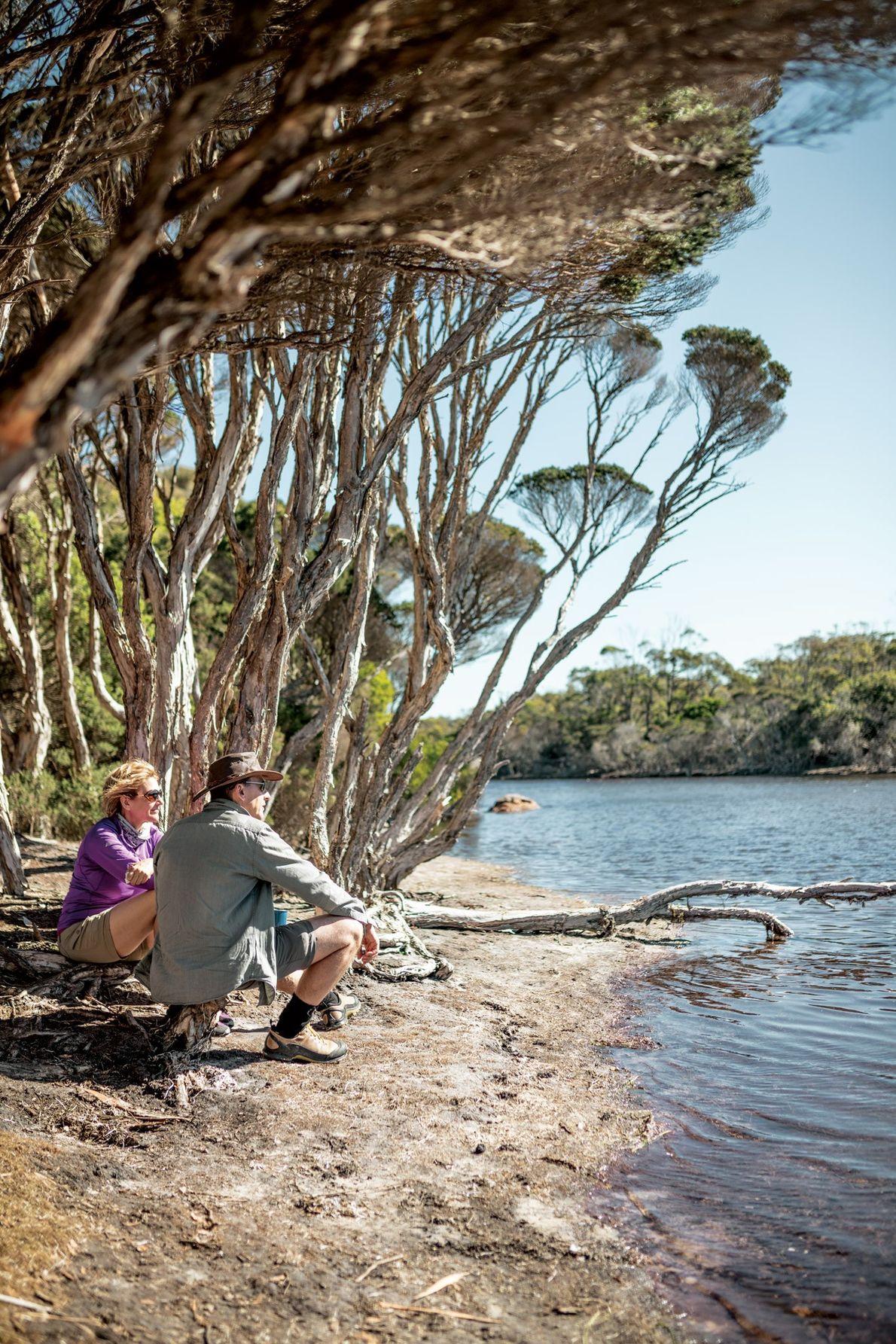 Os mais de 880 trilhos da Tasmânia atravessam todo o estado, levando os caminhantes a conhecer ...