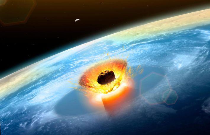 Num ápice, o impacto de Chicxulub mudou a vida na Terra para sempre – abriu uma ...