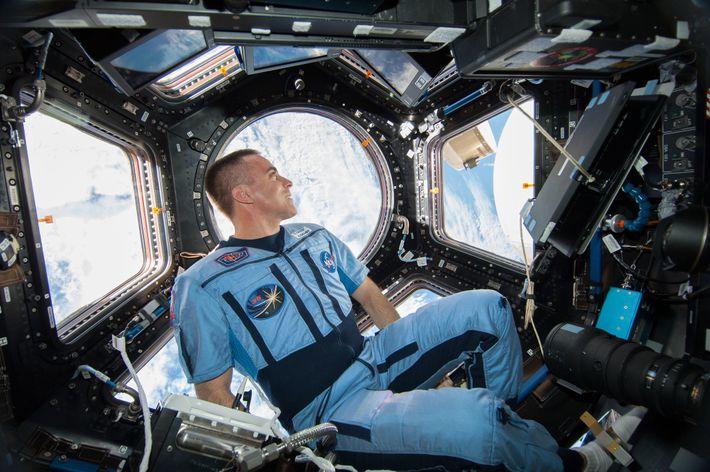 Chris Cassidy, astronauta da NASA e engenheiro de voo da Expedição 36, observava a Terra em ...