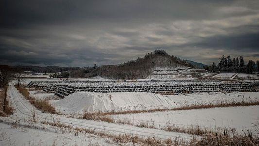 Fotografias Assustadoras das Cidades Fantasma de Fukushima