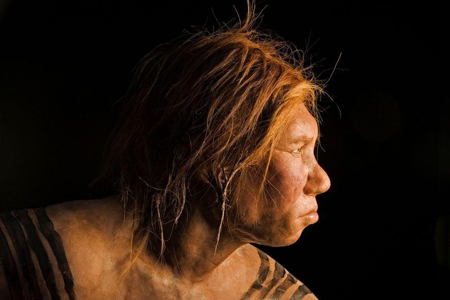 Revelada em 2008, esta reconstrução do rosto de uma mulher de Neandertal foi a primeira a ...