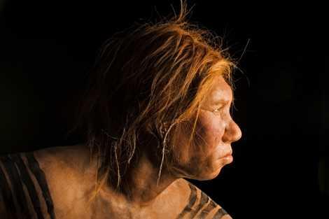 Podemos Ter Mais ADN Neandertal do que Pensamos