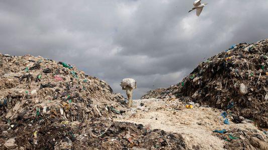 As Interdições aos Sacos de Plástico Estão a Aumentar. Mas São Eficazes?