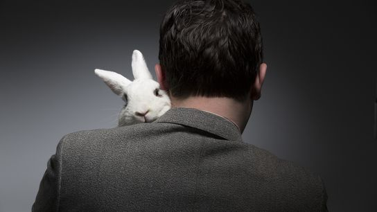 01_rescue_bunnies