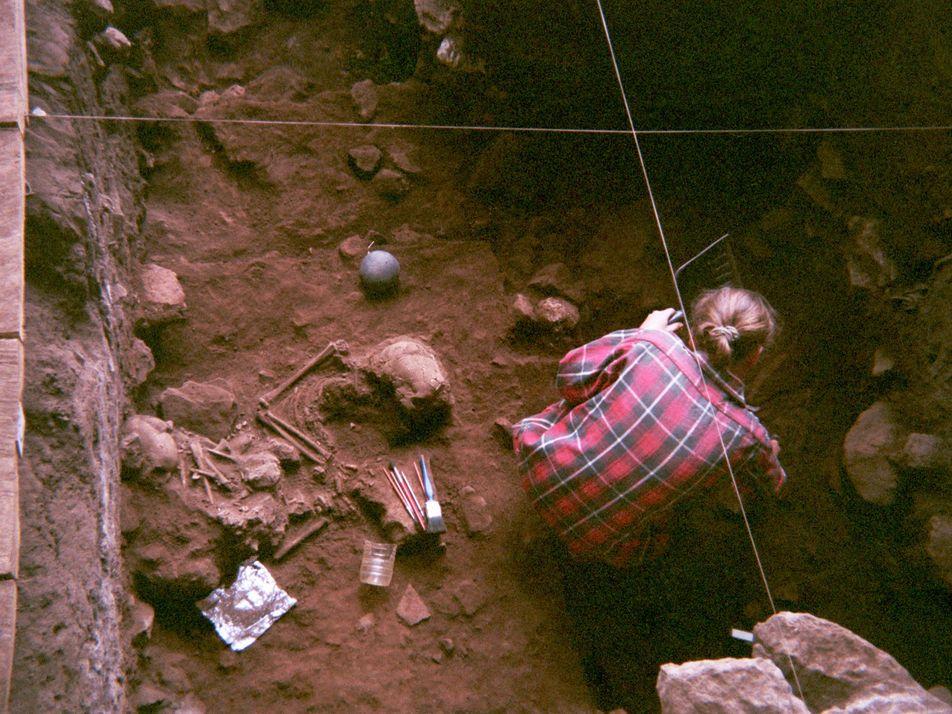 Primeiros Genomas de África Ocidental Revelam Complexidade de Antepassados Humanos