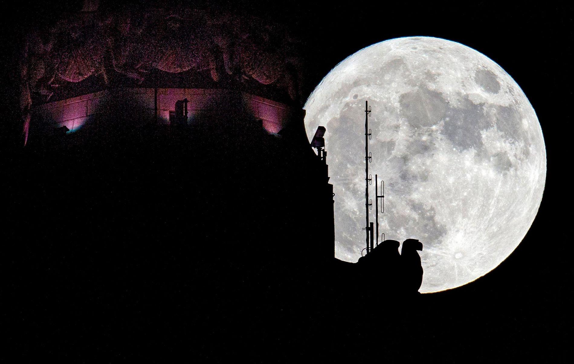 Uma lua cheia nasce por detrás da Torre LeVeque em Columbus, Ohio, em Novembro de 2016.
