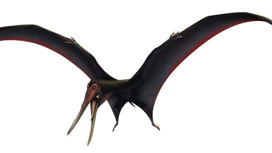 """Nesta ilustração, o recém-nomeado """"Targaryendraco wiedenrothi"""" abre as suas asas."""