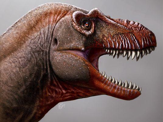 Tiranossauro 'Ceifador da Morte' Descoberto no Canadá
