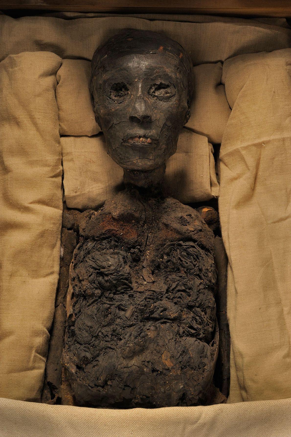 Rei de Tutankhamun