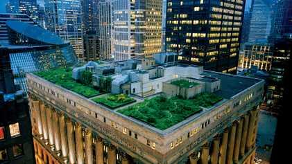 Fotografias de Telhados Verdes