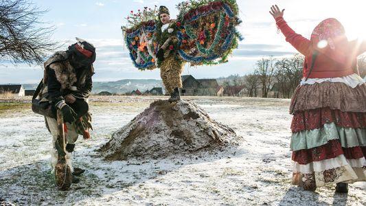 Trajes de Urso, Danças, Donuts - No Interior da Maior Festa da Ucrânia