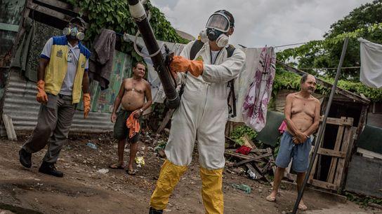 Um funcionário da saúde fumiga uma favela na cidade do Recife, Brasil